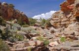 Pictograph Canyon