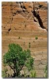 Cliffs, Bandelier