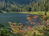 Lake Elizabeth, WA