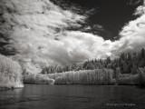 Skagit River Elementals
