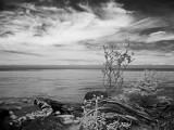 Strait of Juan de Fuca, WA