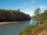 Hoh River, WA