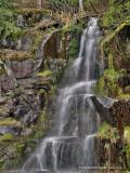 Falls at Mount Rainier