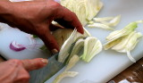 salPC077839 slicing fennel.JPG