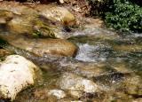 wadi amud stream3.JPG