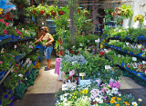 P7161601_garden store.jpg