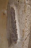 P9261881_mezzuzah old city2.jpg