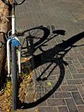 SAM_0190_bike shadow.jpg