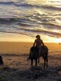 horses_sea_silhouette.JPG