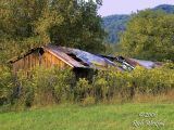 September 10, 2006  -  Old Barn near Normantown, Gilmer County