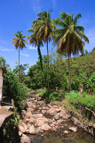 Grenada-15