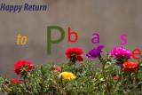 Happy Return to Pbase