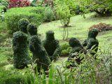 Guadeloupe, 2006