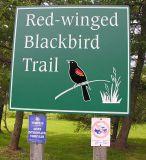 blackbird-trail-sign.jpg