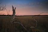 Marshes of Huspah - 2