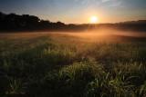 Fog over Hayfield 3
