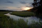Pocotaligo Marsh