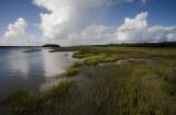 Whale Branch Marsh