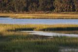 Huspah Marsh at Sunrise