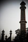 Delhi-43.jpg