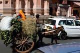 Jaipur, Rahjistan