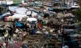 The Laundry (Ghats) of Mumbai