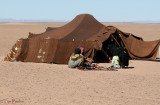 Home of Sahara Girl