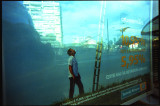REFLECTIONS-038b.jpg