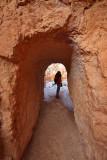 Passage in Queens Garden Trail