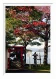 Lake Ashi - Hakone 8