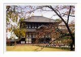 Nara Todaiji Temple 3