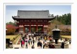 Nara Todaiji Temple 4