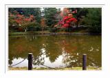 Nara Park 1