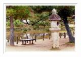Nara Park 2