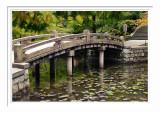 Hojo Garden - Kyoto 3