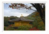 Kinkakuji Temple 3