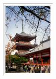 Kiyomizu-dera 1