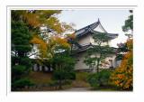 Nijo Castle - Kyoto 1