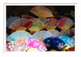 Colorful Fans