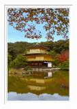 Kinkakuji Temple 1