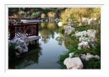 Chinese Garden Pond 2