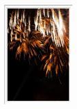Kaleidoscope Of Fireworks