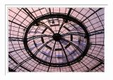 Rotunda's Web Dome