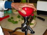wheatgrass grinder