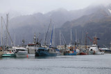 Alaska Cruise 09-0629_IMG_1479.jpg