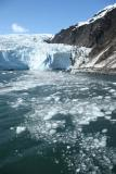 Holgate Glacier and ice in water