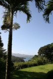 View of Lake Arenal from Chalet Nicholas front yard