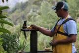 Lucas feeding an Aracari