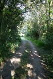 Chalet Nicholas driveway