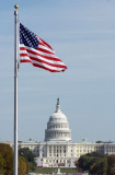 Capitol and Flag.jpg